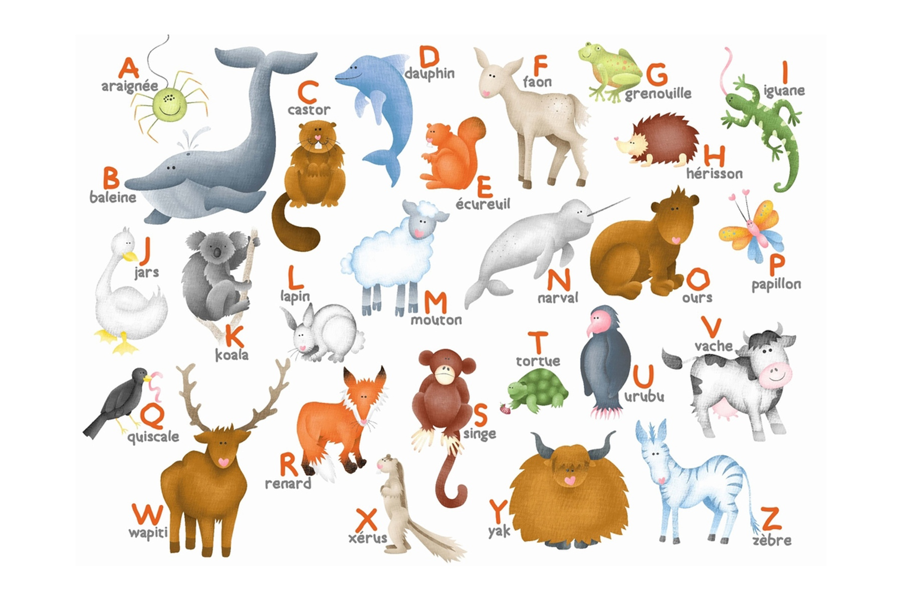 Les Animaux On Pinterest Animaux Fle And Environment